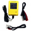 Motobatt Baby Boy 500 mAh 6v/12v Powersports Battery Charger
